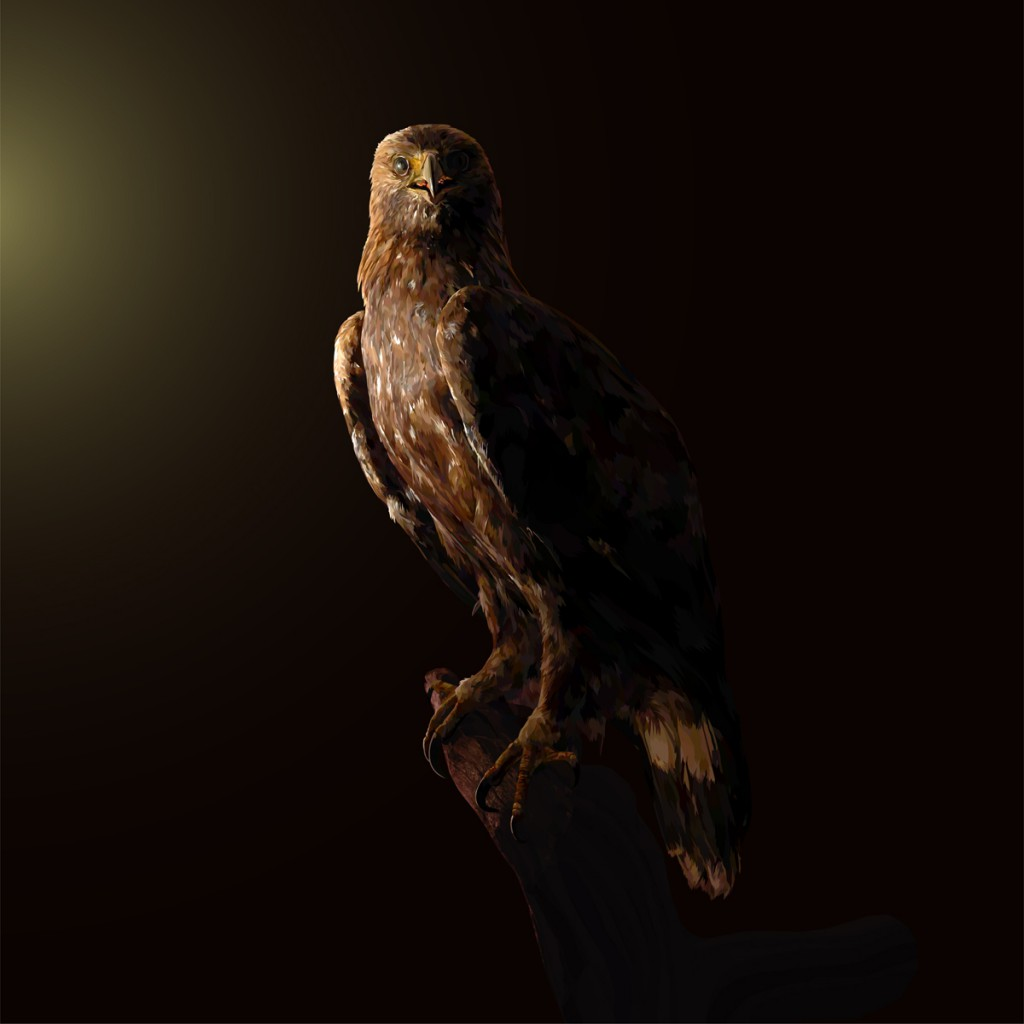 Still_Life_Golden_Eagle